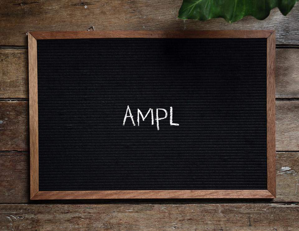 AMPL Shell